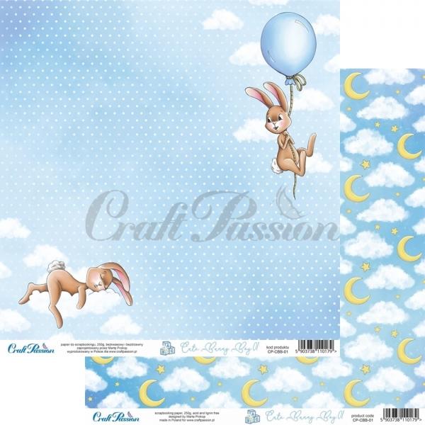 Cute Bunny Boy 01