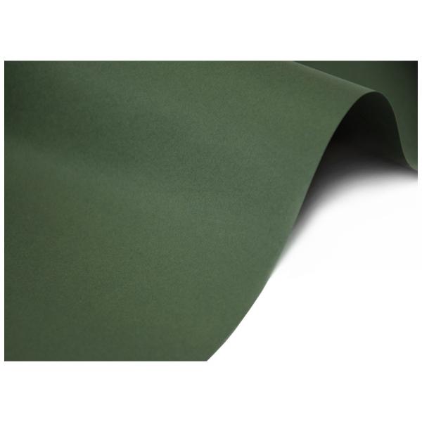 Keaykolour Sequoia Dusty Dark Green 300 g/m²